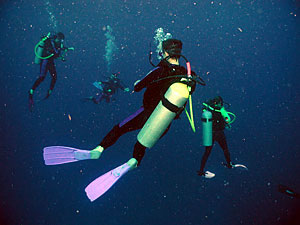 Scuba Diving - Training - Holidays - Free Diving - Snorkeling